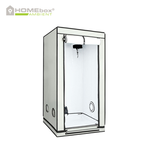 HOMEbox Ambient gro telt 80 x 80 x 160 PAR+