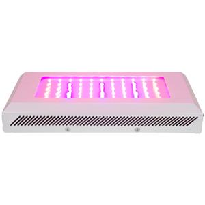 LED 165W