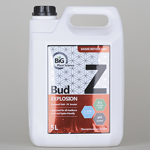 BiG Part Z Bud Explosion 5L