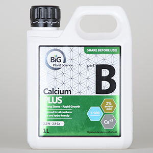 BiG Part B Calcium Plus