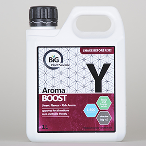 BiG Part Y Aroma Boost