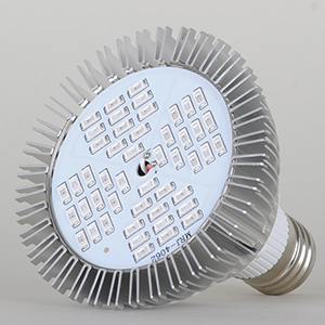 LED 48W
