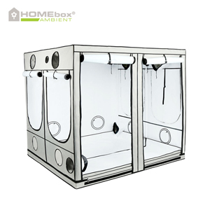 HOMEbox Ambient gro telt 240 x 240 x 200 PAR+